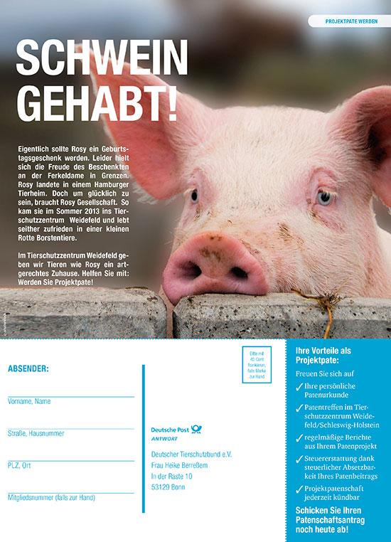 Tierschutzbund Anzeige Projektpate