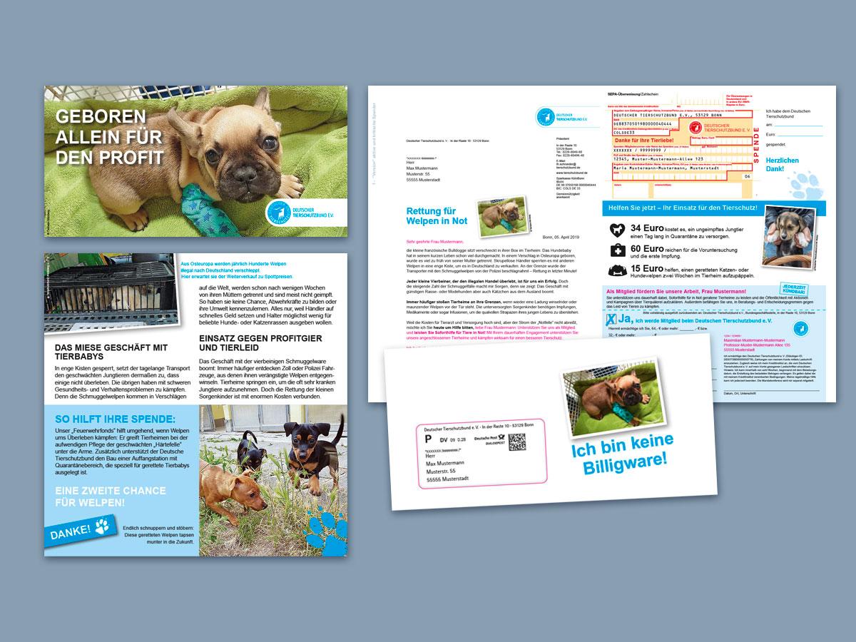 Deutscher Tierschutzbund Mailing